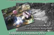 Let's do it! GREECE - Καθαρισμός και περιήγηση στο Βαλανάρη.